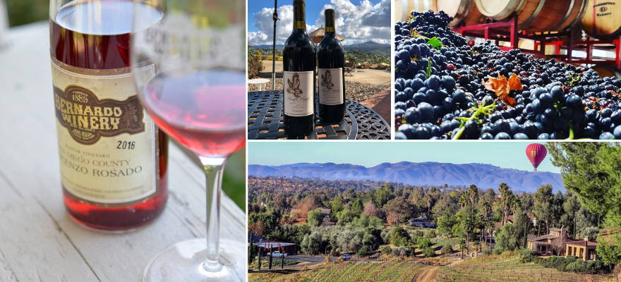 north county san diego wineries